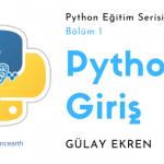Python programlama dilini öğrenmeye başlayın