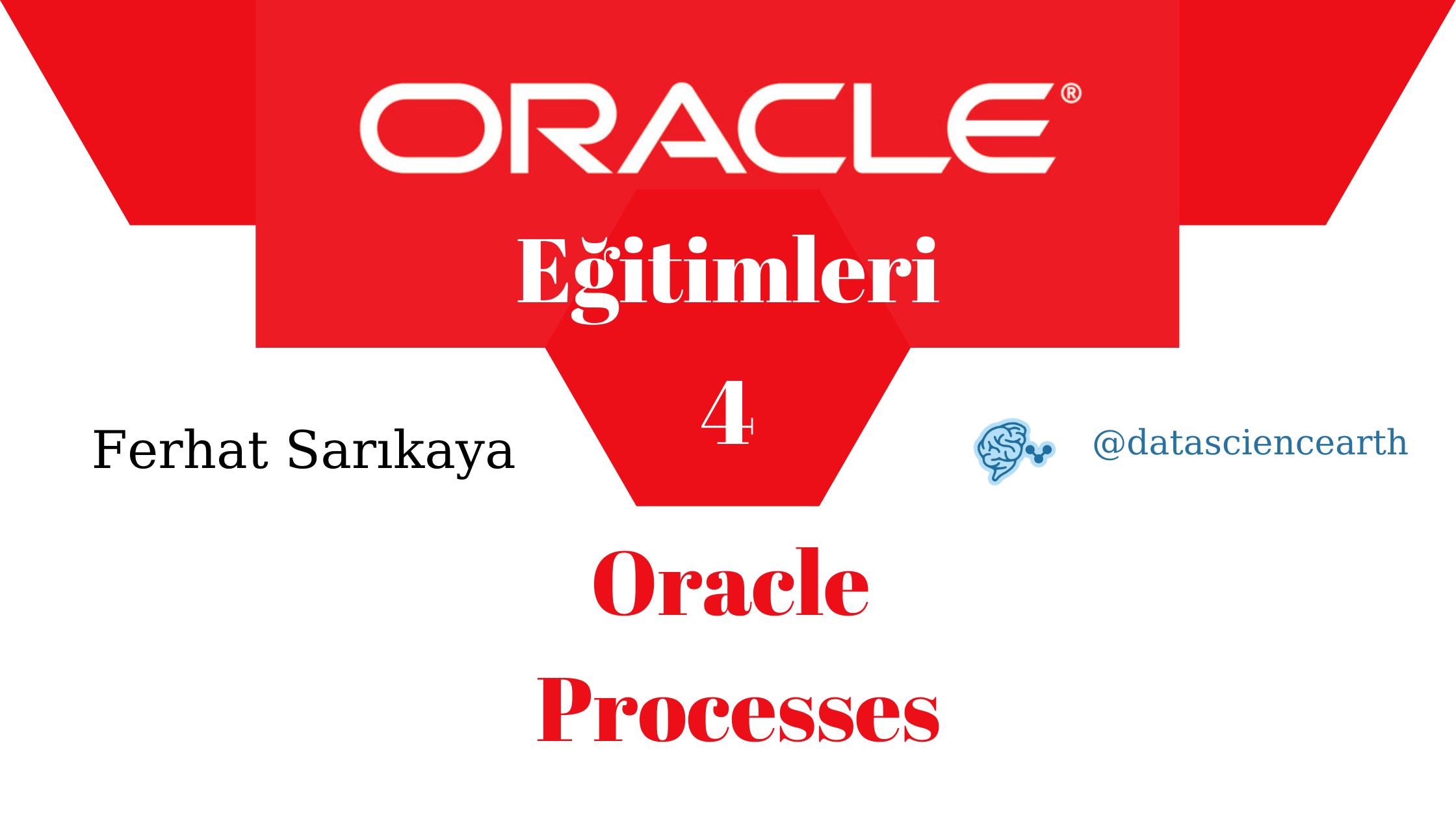 Oracle Eğitimleri - Oracle Processes