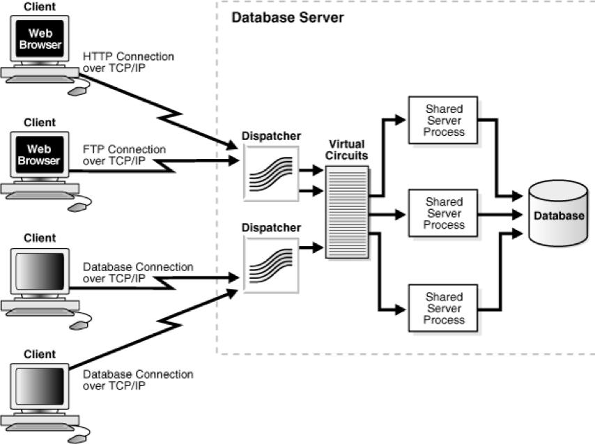 Shared Server Bağlantısı