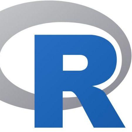 R Kullanıcıları grup logosu
